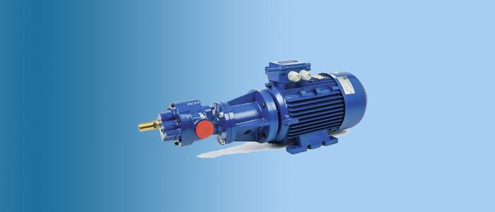 gear pump gvr model bfc