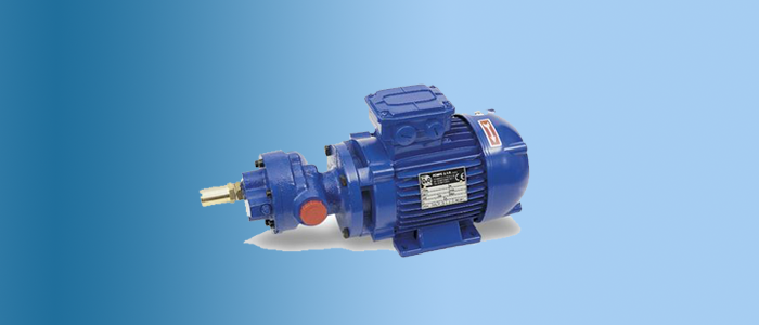 gear pump gvr model bmg-bcf